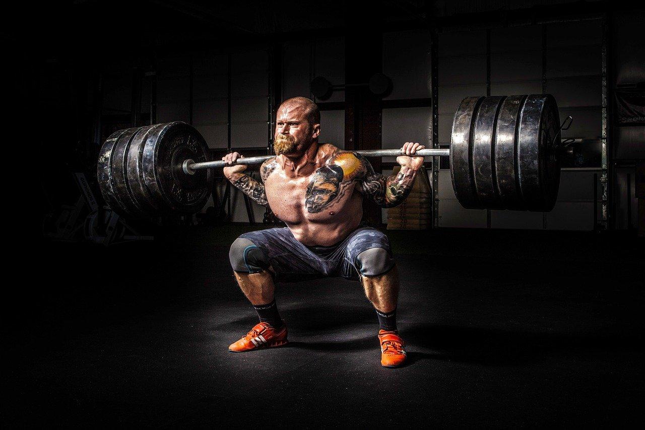 activités physiques pour se muscler